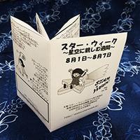 swminibook.jpg